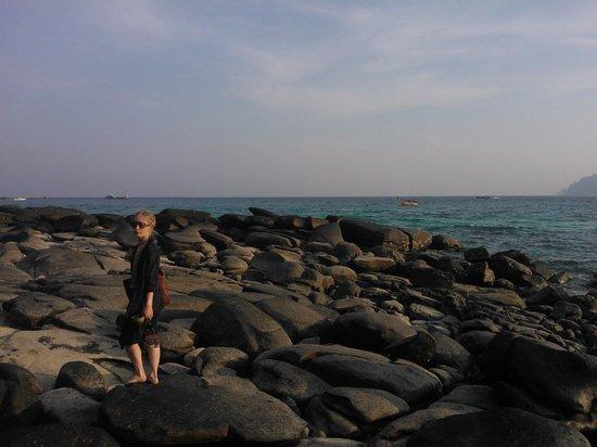 Bay View Resort:                   Low tide walk towards Long Beach