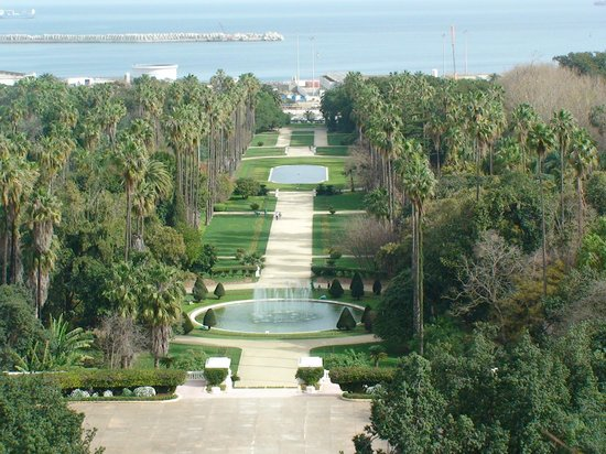 Le Jardin d'Essai du Hamma:                   Jardin d'Essai main boulevard viewed from the Fine Arts Museum balcony