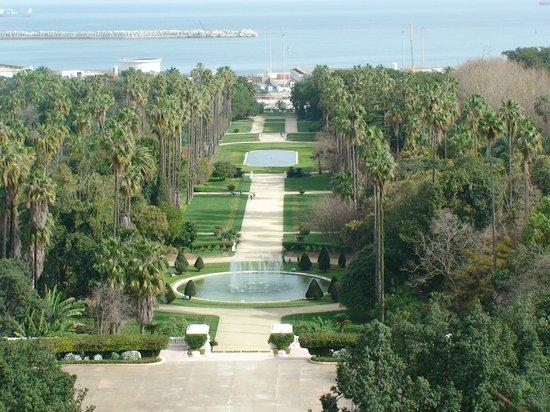 Le Jardin d'Essai du Hamma :                   Jardin d'Essai main boulevard viewed from the Fine Arts Museum balcony