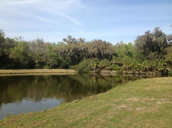 Sugar Mill Ruins Travel Park:                   lake