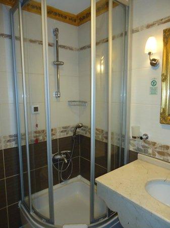Maywood Hotel :                   The bathroom