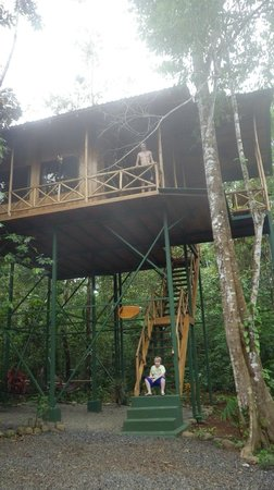 Tree Houses Hotel Costa Rica:                   Yiquirro Tree House