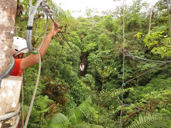 Tree Houses Hotel Costa Rica:                   Zip Lining