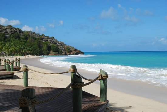 Galley Bay Resort:                   Galley Bay beach