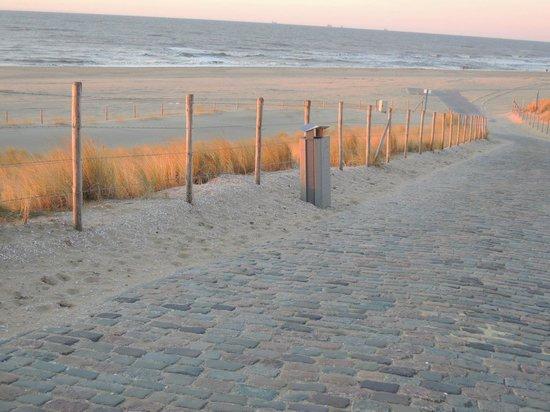 NH Atlantic Den Haag:                   beach walk in march