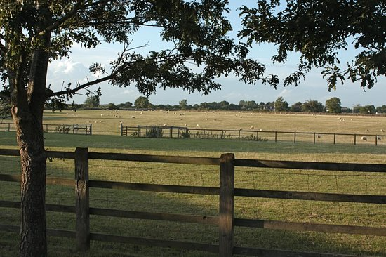 Church Farm Country Cottages: View from the country lanes