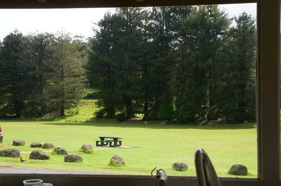 Kokee Lodge Restaurant:                   View from restaurant