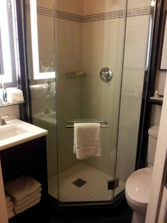 The Algonquin Hotel Times Square, Autograph Collection:                   Bath - modern, clean and small.... but convenient for use