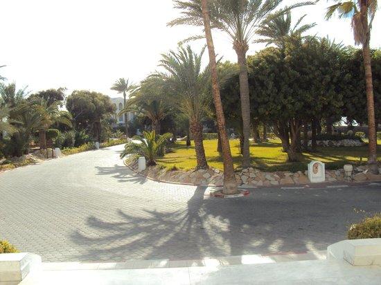 Hotel Meninx: Tuin voor het hotel