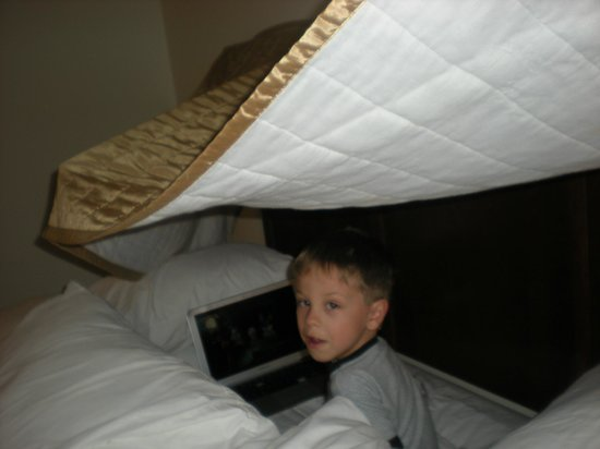 Baymont Inn & Suites Houma:                   Inside the command center of the fort!