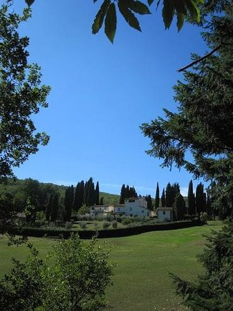 Villa Campestri Olive Oil Resort:                   beautiful villa nearby property