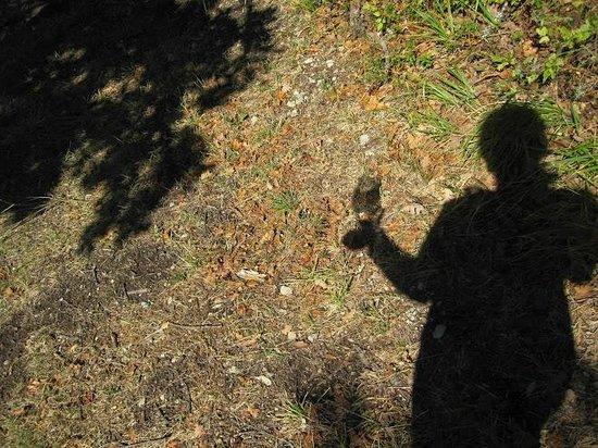 Villa Campestri Olive Oil Resort:                   camminare con il bicchiere di vino