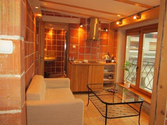 Aparthotel Stare Miasto:                   sitting area with sink, fridge and small hob