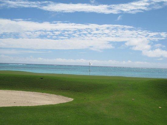 Tortuga Bay Hotel Puntacana Resort & Club :                   One of 3 golf courses