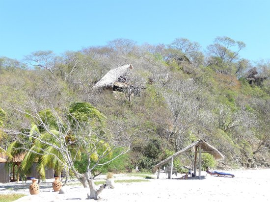 Morgan's Rock Hacienda and Ecolodge:                   View of bungalow from beach