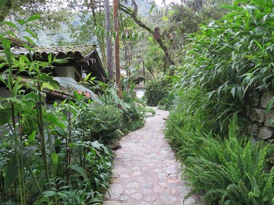 Inkaterra Machu Picchu Pueblo Hotel:                   Pathways