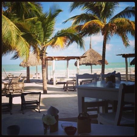 โฮลบ็อกซ์โฮเต็ล คาซาลาโตร์ตูแกส-เปอร์ตีบีช:                   desayuno en la playa