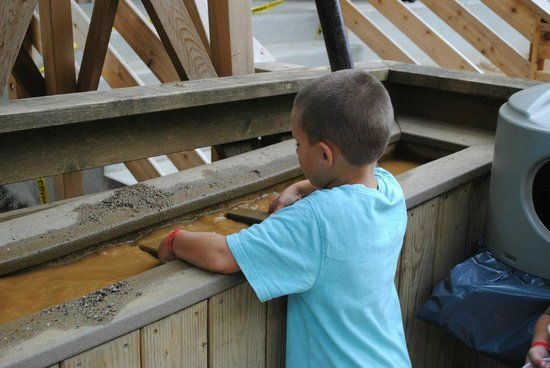 Yogi Bear's Jellystone Park Camp-Resort in Quarryville:                   Looking for gold!