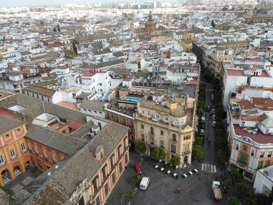 Hotel Dona Maria: vanuit de Giralda toren een foto van het dakterras met zwembad
