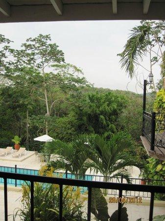 San Ignacio Resort Hotel: Djungeln utanför hotellet