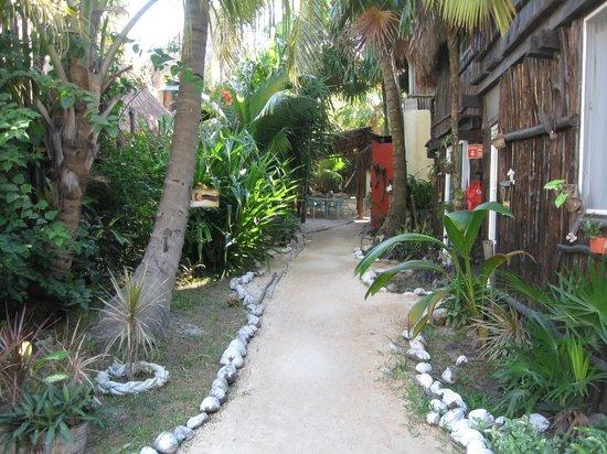 My Tulum Cabanas:                   looking toward the beach past the dinning area