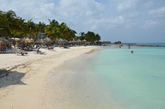 Utsikt fr n balkongen picture of divi aruba phoenix beach resort palm eagle beach tripadvisor - Divi aruba beach ...
