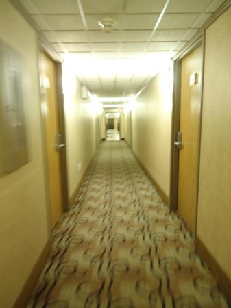 BEST WESTERN PLUS Siding 29 Lodge:                   Hallway on the main floor