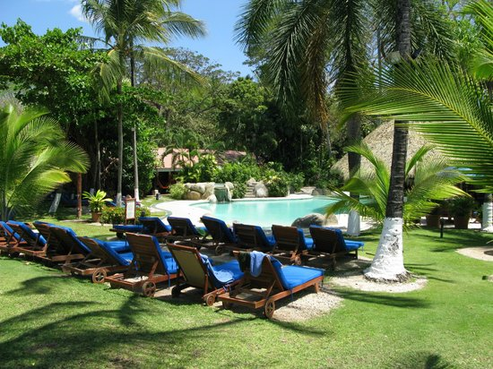 Bahia del Sol Beach Front Hotel & Suites: zwembad en tuin