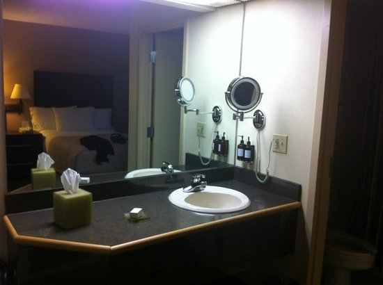 Holiday Inn Express & Suites :                   Bathroom