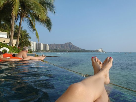 Sheraton Waikiki:                   The most amazing view from the Infinity Pool