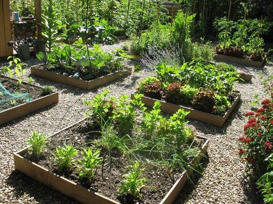 Gemuesegarten photo de ambiance jardin diebolsheim for Ambiance jardin erpeldange