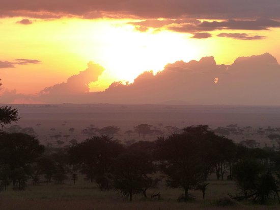 Dunia Camp, Serengeti:                   view from Dunia camp