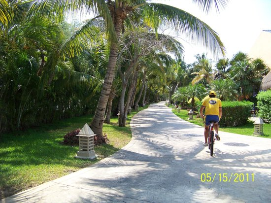 Iberostar Grand Hotel Paraiso:                   going for a bike tour. Eduardo was one of our favorite team members!