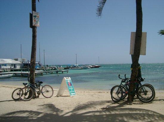 Reef Village Resort照片