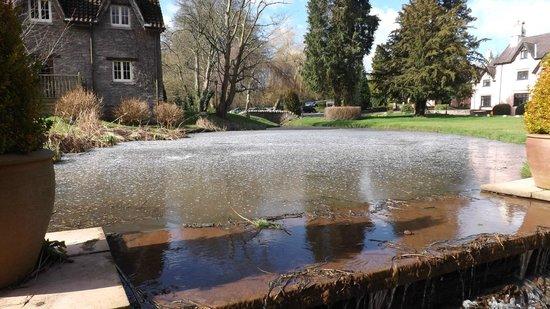 Ramada Resort Cwrt Bleddyn Hotel & Spa:                   Frozen pond in hotel grounds