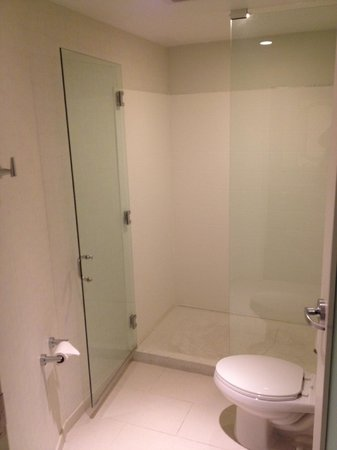 SpringHill Suites St. Louis Airport/Earth City:                   Great shower