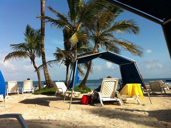 Decameron Marazul :                   Playa hotel Decameron Mar Azul