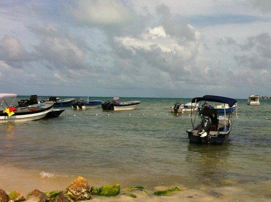 Decameron Marazul :                   Una de las playas