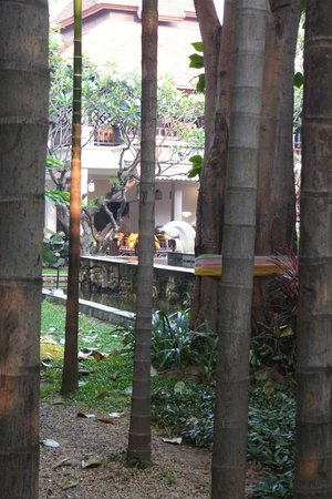 Bodhi Serene Hotel:                   View from path across quad towards the covered dining area