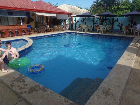 Citadel Bed and Breakfast : La piscina