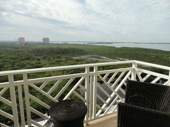 Hyatt Regency Coconut Point Resort and Spa:                   Blick vom Balkon