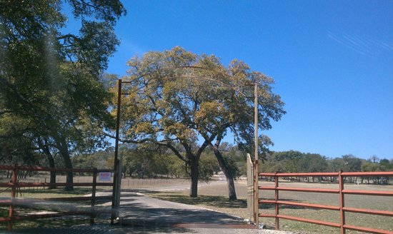 Tonkawaya Ranch B&B:                                                       Entrance to the ranch