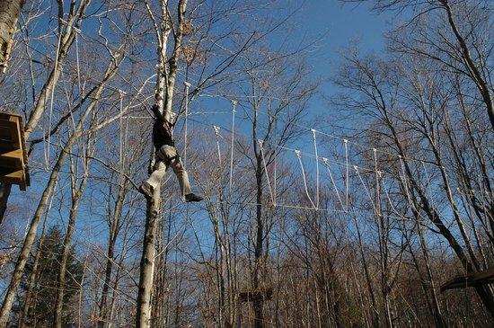 TimberQuest Park : Sky walker!