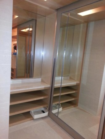 Pathumwan Princess Hotel:                   mirror in the side of this closet is also served an access to main door...