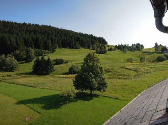 Schwarzwaldgasthof Grüner Baum: Blick vom Zimmer