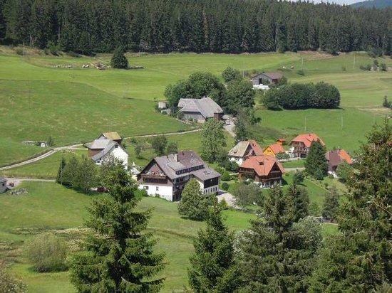 Schwarzwaldgasthof Grüner Baum: Blick vom Berg aufs Hotel