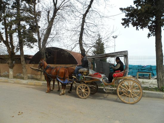 Burgazada: our carriage awaits...