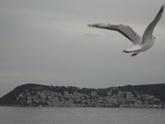 Burgazada: approaching the island