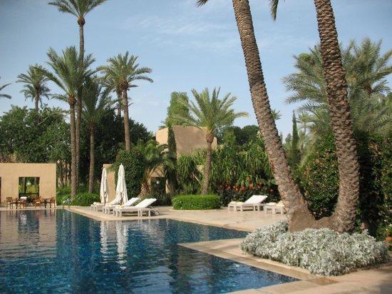 Club Med Marrakech le Riad: piscina e dintorni