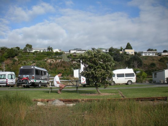 Kawhia Beachside S-Cape Holiday Park:                   View from the beach to the park ground